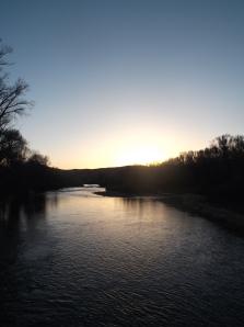 dog swim, sun, sunset 148