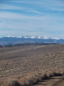 looking north at the West Elks...