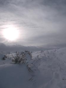 windy ski 2-8-14 001